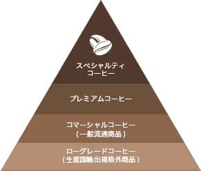 コーヒー豆の階層イメージ