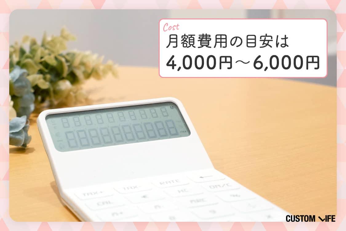 月額費用の目安は4000~6000円