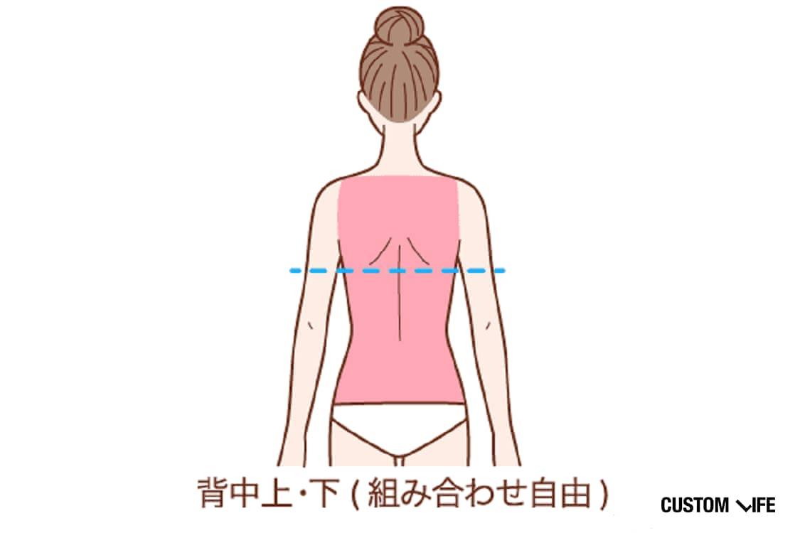 背中上+下(組み合わせ自由)